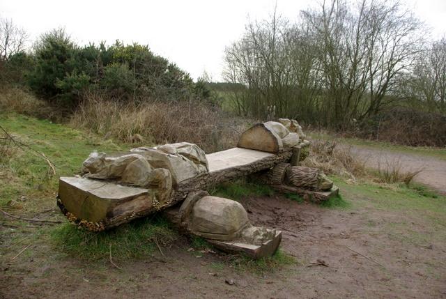 ספסלי עץ מעוצבים